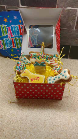 Dog Treats Birthday Box